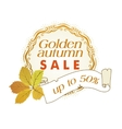 golden autumn sale vector image