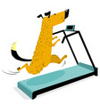 fast running dog on treadmill cute racing pet vector image vector image