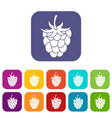raspberry or blackberry icons set flat vector image vector image
