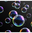 Realistic transparent soap bubbles vector image