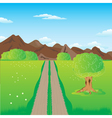 Road in mountains vector image vector image