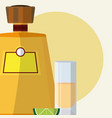 tequila bottle with shot vector image