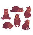 bear set hand drawn style vector image vector image