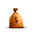 bright old brown money bag with texture and dollar vector image vector image
