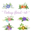 flowers design Set of floral icon vector image