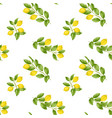 lemon brunches seamless pattern vector image vector image