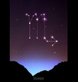 scorpio zodiac constellations sign with forest vector image vector image