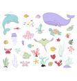sea animals fish and water plants vector image