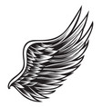 wings bird black white 888 vector image