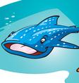 whale shark vector image