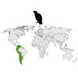 Andean Condor distribution vector image