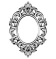 baroque frame decor detailed rich ornament vector image
