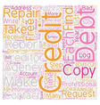 DIY Credit Repair Tips text background wordcloud vector image vector image