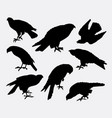 eagle falcon hawk bird animal silhouette vector image vector image