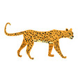 leopard cute trend style animal predator mammal vector image vector image