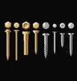 set of screws bolts nuts vector image