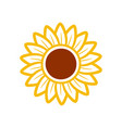 sunflower icon design template isolated vector image vector image