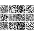 animal seamless pattern set mammals fur vector image vector image