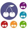 cherry icons set vector image