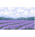 nature scene with lavender field mountains vector image