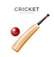 realistic cricket bat stick betting promo vector image
