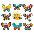 Summer card with butterflies and stylish lettering vector image vector image
