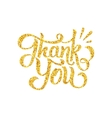 Thank You lettering isolated on white vector image
