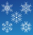 delicate white snowflakes vector image vector image