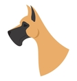 Dog head great dane vector image vector image