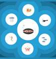 flat icon marine set of cancer tuna fish and vector image vector image