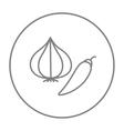 Garlic and chilli line icon vector image