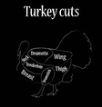 Turkey cuts vector image vector image
