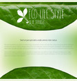 ecology green banner eco green textured banner vector image