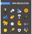 Set of winter and summer sport isolated icons vector image