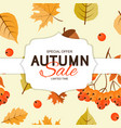 autumn background template with leaves special vector image