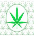 cannabis leaf vector image