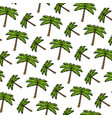 color tropical palm nature tree background vector image vector image