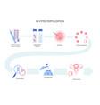 human fertility concept vector image vector image