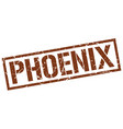 phoenix brown square stamp vector image vector image