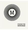 Stylish graceful monogram vector image vector image