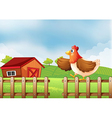 A hen above the fence vector image vector image