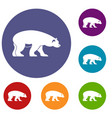 bear icons set vector image vector image