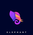 elephant color template vector image