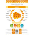 food infographics poster honey dessert vector image vector image