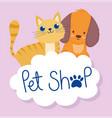 pet shop cute little cat and dog cloud cartoon vector image vector image