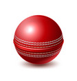 realistic cricket ball for betting promo vector image