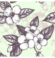 seamless pattern with jasmine flowers vector image vector image