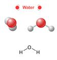 Water molecule vector image vector image