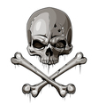 Decrepit skull with two crossed bones vector | Price: 3 Credits (USD $3)