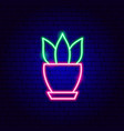 house plant neon sign vector image